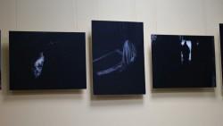 виставка Маріанни Глинської