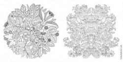 Раскраска «Волшебный сад» и «Заколдованный лес» Джоанны Басфорд