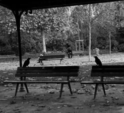 Париж от Наталии Компанцевой