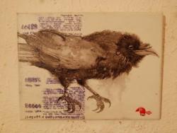 Птицы Ирины Озаринской